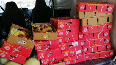 Photo of أمانة العاصمة المقدسة تصادر أكثر من 400 كيلوجراماً من الخضروات والفواكه