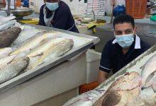 Photo of اتحاد الصيادين يجدد مطلبه بضرورة تطعيم باقي الصيادين والعمال وتنفيذ المطالب