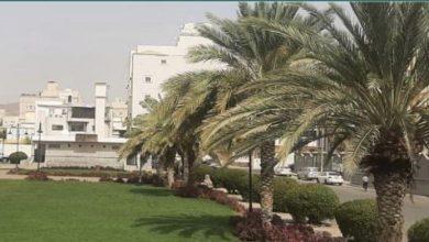 Photo of أمانة العاصمة المقدسة تُغلق محطة وقود مخالفة بالشرائع وتواصل صيانة الحدائق العامة